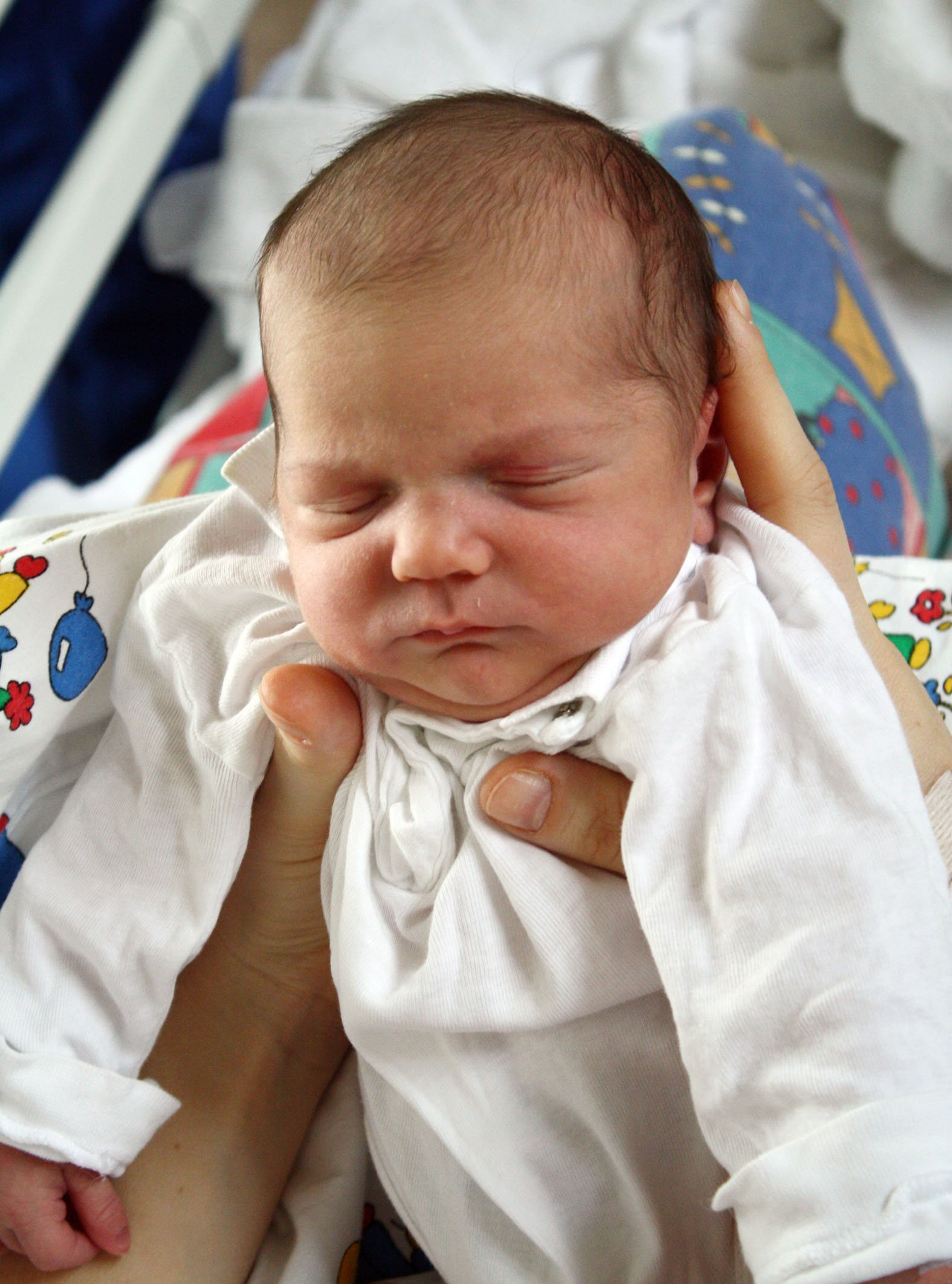 Фото шестимесячного ребенка родившегося